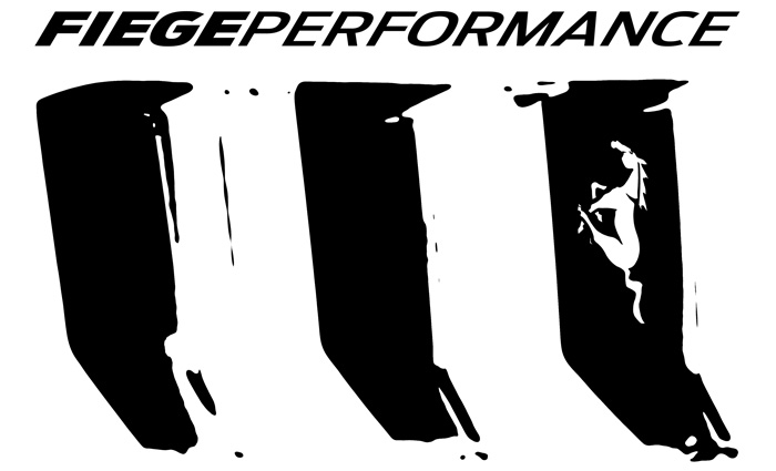 FIEGEPERFORMANCE